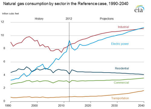 The Growth of the Consumption of Natural Gas in the US